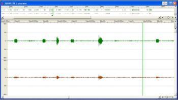 WAV-Signal der kritischen Sekunden