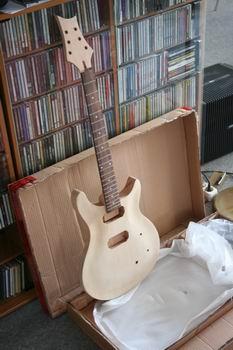 Gitarrenbausatz