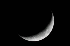 Mond, TV85, 18.04.2010